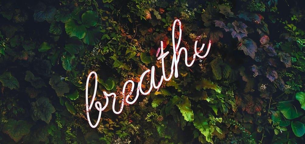 Наблюдая свое осознанное дыхание